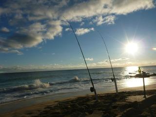 fishing-578017_1920